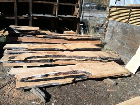 large-juniper-slabs-2